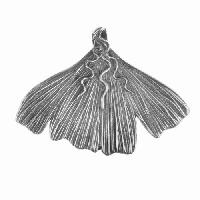 Dorabeth Pendant Gingko Leaf Large - Antique