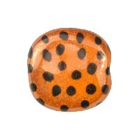 Kazuri MEZZO Pita Pat Small Dots Ceramic Bead - Honey / Black