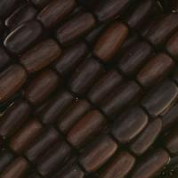 Tiger Ebony Wood Bead Rice Beads 5x10mm