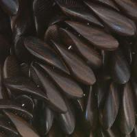 Tiger Ebony Wood Bead Petals 6x15mm Top Drill