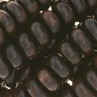 Tiger Ebony Wood Bead Rondelle 12x6mm