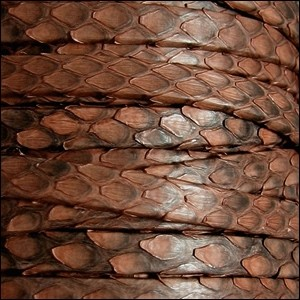 Genuine Snakeskin 5mm Flat Leather Cord - Brandy