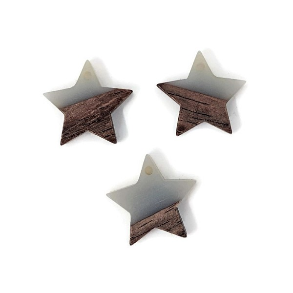 Wood and Acrylic Small Star Pendant